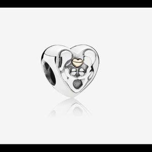 Heart Of The Family Pandora Charm